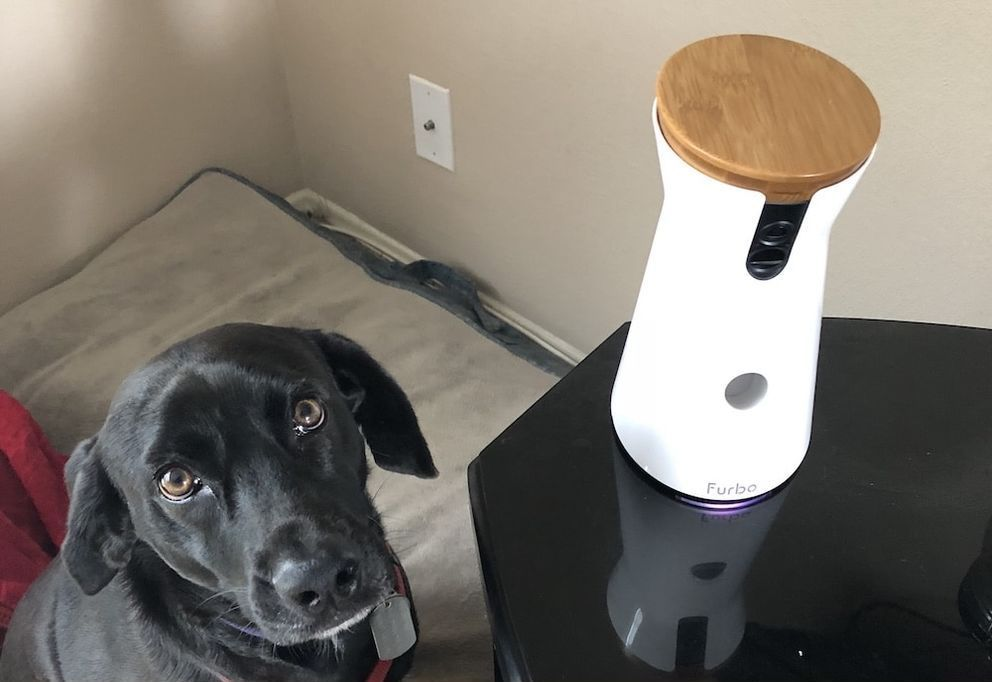 unboxing the furbo smart pet camera at smart pet toys review