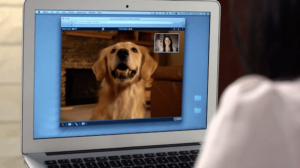 While reviewing the IcPooch we were able to use both smartphone and laptop to check in on our dog