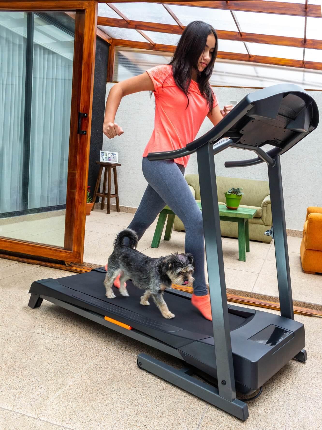 girl and dog on human treadmill.